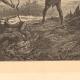DETTAGLI 03 | Pesca e Caccia - Serpenti in Africa