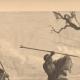 DETTAGLI 05 | Pesca e Caccia - Serpenti in Africa