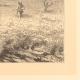 DÉTAILS 02 | Chasse et Pêche - Egypte - Pyramides - Oiseaux - Chasse aux Cailles