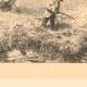 DÉTAILS 03 | Chasse et Pêche - Egypte - Pyramides - Oiseaux - Chasse aux Cailles