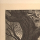 DÉTAILS 05 | Monstre - Mythologie - Combat contre un Serpent Géant