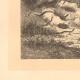 DÉTAILS 01 | Jeune Cerf Attaqué par des Serpents