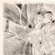 DÉTAILS 05   Curiosa - Erotisme - Libertinage - Erotica - Le Marquis de Sade