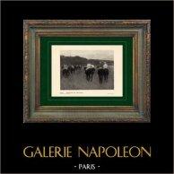 Impressionism - hästkapplöpning - Racehästar i Longchamp - Chevaux de Courses à Longchamp (Edgar Degas - 1878) | Original heliogravyr på velängpapper efter Edgar Degas. Utskrivavet 6 år för hans död. 1911