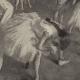DÉTAILS 02 | Impressionnisme - Ballet - Etude de Danseuses (Edgar Degas - 1879)