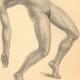 DETALLES 02 | Desnudo Artístico - Desnudo Femenino - Mujer - Estudio - Christine - Postura 3