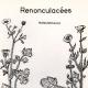DETAILS 01   Botany - Botanical - Ranunculaceae - Ranunculus - Philonotis - Bulbosus