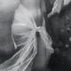 DÉTAILS 02 | Daguerréotype érotique Français - Nu Féminin - La Nymphe Nue Entourée par des Papillons