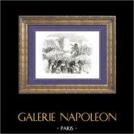 História de Napoleão Bonaparte - Sitio de Acre - Campanha de Egipto | Gravura em madeira original (xilogravura) desenhada por A. Raffet. [tiré à part]. 1839