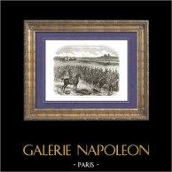Geschichte von Napoleon Bonaparte - Napoleonische Kriege - Koalitionskriege - Die Schlacht bei Wagram (1809)