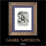 Histoire de Napoléon Bonaparte - Prince de Schwarzenberg (1771-1820) - Maréchal Autrichien