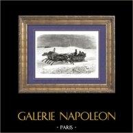 Historia de Napoleón Bonaparte - Retirada de Moscú - Campaña de Rusia - Sexta Coalición | Original grabado en madera (xilografía) dibujado por A. Raffet, grabado por Piaud. [tiré à part]. 1839