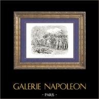 Geschichte von Napoleon Bonaparte - Koalitionskriege - Schlacht bei Fère-Champenoise (1814) - Sechste Koalition