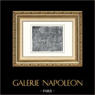 Ancient Egypt - Egyptology - The Egyptian Art - Sculpture - Pharaoh - Low-reliefs of Akhenaten - Amenophis IV - Amenhotep IV (Tell el-Amarna) | Original heliogravure on art paper. Anonymous. 1920