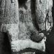 DÉTAILS 02   Egypte Antique - Egyptologie - L'Art Egyptien - Sculpture - Statue - Buste de Femme