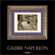 La Rue de Berne - La Rue Mosnier aux Drapeaux (Edouard Manet) | Héliogravure originale sur papier velin d'après Edouard Manet. Anonyme. 1910