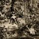 DETTAGLI 02 | Ragazza in Giardino a Bellevue - Jardin de Bellevue (Edouard Manet)