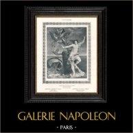 Nudo Femminile - Erotica - Curiosa - Mostro Cefeo - Andromeda Salvata da Perseo (Guido Reni)