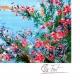 DETALLES 02 | Francia - Provence - Paisaje de Provenza - Riviera Francesa - Marine - Puerto sobre el Mediterráneo