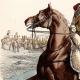 DÉTAILS 03 | Soldat Napoléonien - Uniforme - Carabinier - Cavalerie (1812)