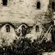 DETAILS 03 | Church San Giovanni degli Eremiti - St. John of the Hermits - Palermo - Sicily (Italy)