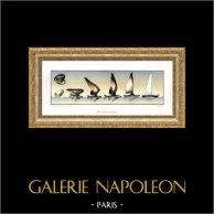 Bateau - Voilier et Poisson [34cm x 80cm] | Planche sur papier d'art. Tirage limité, Haute Qualité. 1995