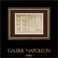 Decoración - Capitels y Pedestales - Siglo XVI