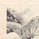DÉTAILS 01 | Gargantua et Pantagruel - Rabelais - Mouton