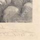 DÉTAILS 06 | Gargantua et Pantagruel - Rabelais - Mouton