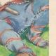DÉTAILS 04 | Gargantua et Pantagruel - Rabelais - Indiens d'Amérique