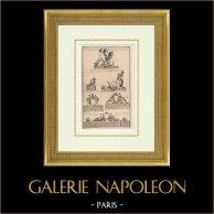 Jardin - Décoration - Sphinx - Vase - Guirlande - Statue - Château de Versailles - Ile de France | Héliotypie originale d'après une gravure gravée par Charpentier d'après Blondel. 1920