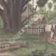 DÉTAILS 04   Pagode Royale à Bassac - Indochine Française (Viêtnam)