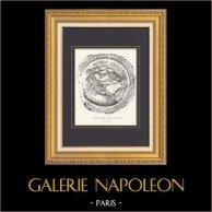 Gallo-romersk Medaljong - Nérac - Lot-et-Garonne (Frankrike)