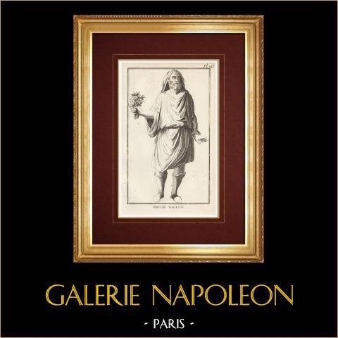 Gaul - Religia - Kapłan Galijski |