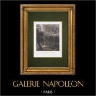Napoleons Grav - Sankt Helena - Allegori