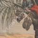 DÉTAILS 02   Guerre hispano-américaine - Surveillance dans un cocotier - 19ème Siècle