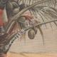DÉTAILS 04   Guerre hispano-américaine - Surveillance dans un cocotier - 19ème Siècle