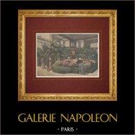 Ausstellung des Gartenbaus in Cours la Reine - Paris (1892)