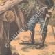 DÉTAILS 06 | Chasseurs alpins - Manoeuvres de montagne dans les Vosges - XIXème Siècle