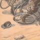 DÉTAILS 05 | Arrestation d'un voleur à bicyclette