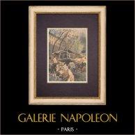 Ekspozycja Uniwersalna 1900 - Paryż - Konstrukcje (1899)