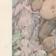 DETAILS 02 | Contes de Charles Perrault - Hop-o'-My-Thumb