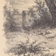 DÉTAILS 03 | Paysage de Lorraine - Etude d'arbres - Un saule mort (France)