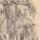 DÉTAILS 05 | Paysage de Lorraine - Etude d'arbres - Un saule mort (France)