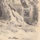 DÉTAILS 06 | Paysage de Lorraine - Etude d'arbres - Un saule mort (France)