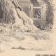 DÉTAILS 08 | Paysage de Lorraine - Etude d'arbres - Un saule mort (France)