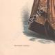 DÉTAILS 05   Gravure de Mode - Paris - La Couturière - 1888 - Modèle 353