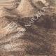 DÉTAILS 08 | Vue du Minnesota - Roches volcaniques (États-Unis d'Amérique)