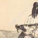 DÉTAILS 02 | Indiens d'Amérique - Femme Chinouk (États-Unis d'Amérique)