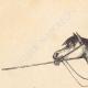 DÉTAILS 01 | Comanche - Amérindien - Costume (États-Unis d'Amérique)